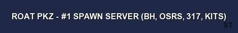 ROAT PKZ 1 SPAWN SERVER BH OSRS 317 KITS Server Banner